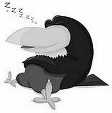 sleeping-raven-vector-isolated-white-48588759