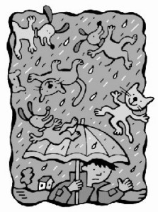 raining-cats-and-dogs1